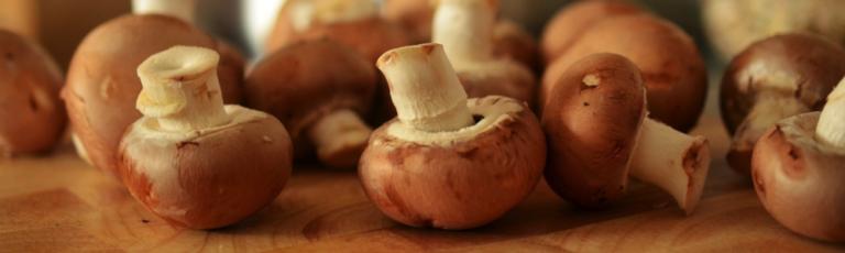Funghi: come si cucinano?